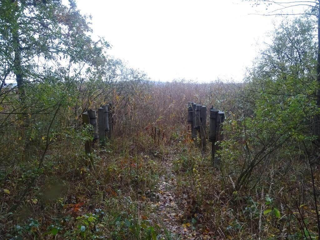 rezerwat piskory - pozostałości z wież obserwacyjnych