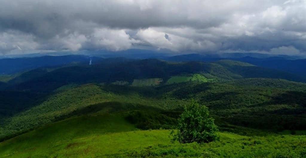 Widok na Bieszczadzki Park Narodowy z Połoniny Caryńskiej